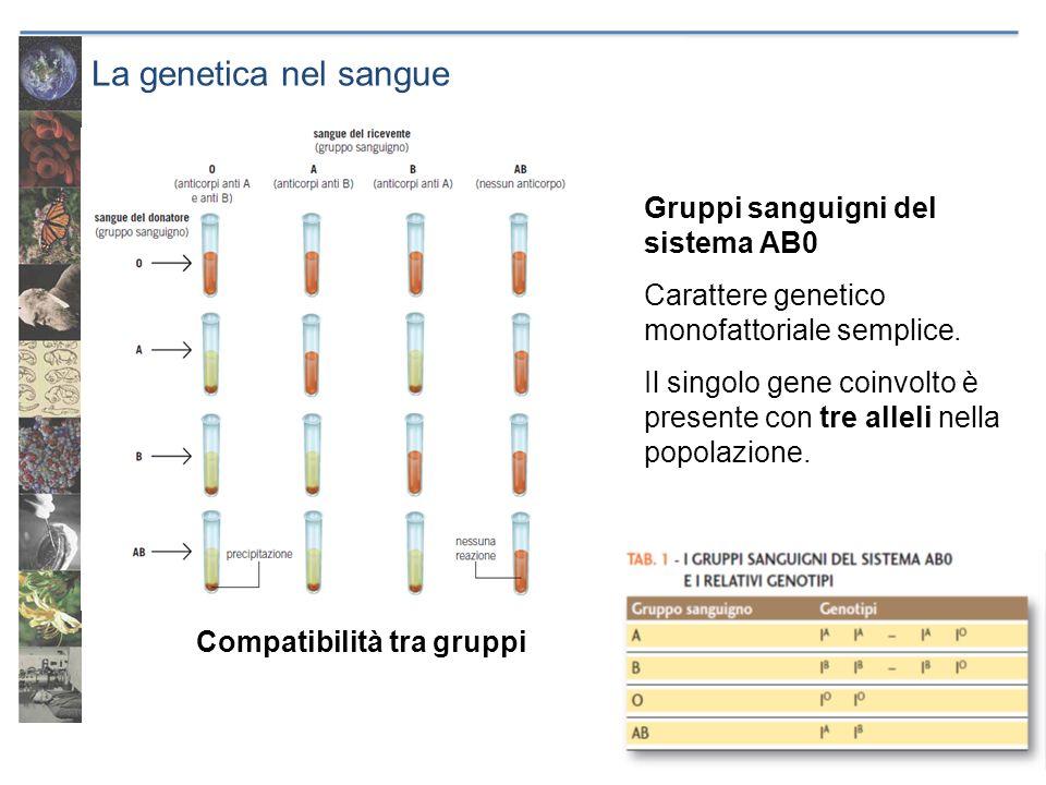 La genetica nel sangue Gruppi sanguigni del sistema AB0 Carattere genetico monofattoriale semplice. Il singolo gene coinvolto è presente con tre allel