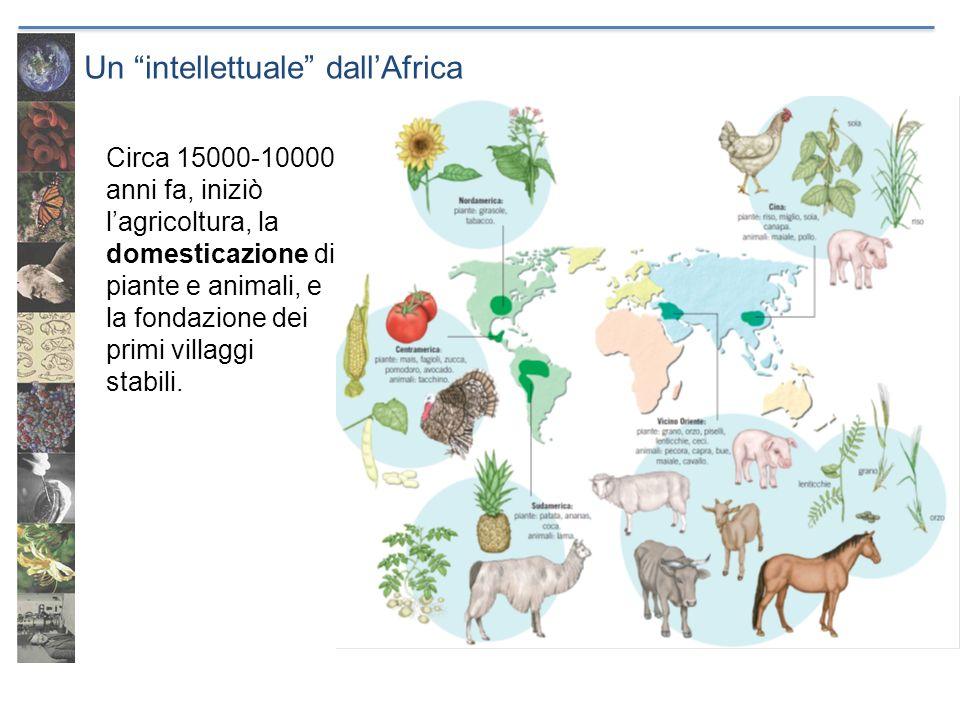 Un intellettuale dallAfrica Circa 15000-10000 anni fa, iniziò lagricoltura, la domesticazione di piante e animali, e la fondazione dei primi villaggi