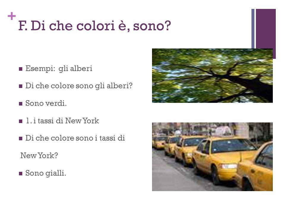+ F. Di che colori è, sono? Esempi: gli alberi Di che colore sono gli alberi? Sono verdi. 1. i tassi di New York Di che colore sono i tassi di New Yor