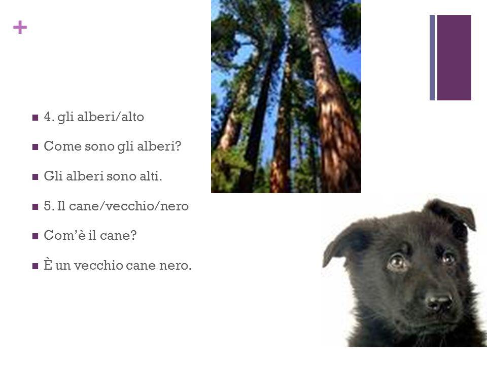+ 4. gli alberi/alto Come sono gli alberi? Gli alberi sono alti. 5. Il cane/vecchio/nero Comè il cane? È un vecchio cane nero.