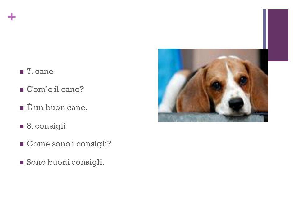 + 7. cane Come il cane È un buon cane. 8. consigli Come sono i consigli Sono buoni consigli.