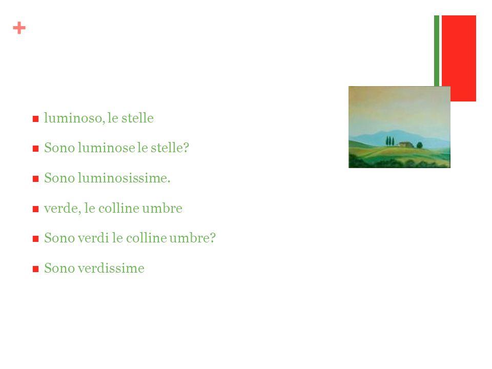 + luminoso, le stelle Sono luminose le stelle? Sono luminosissime. verde, le colline umbre Sono verdi le colline umbre? Sono verdissime