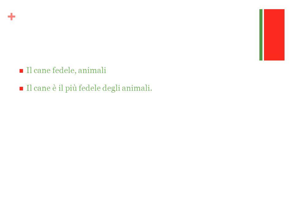 + Il cane fedele, animali Il cane è il più fedele degli animali.