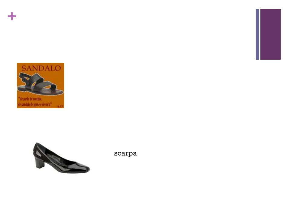 + sc scarpa