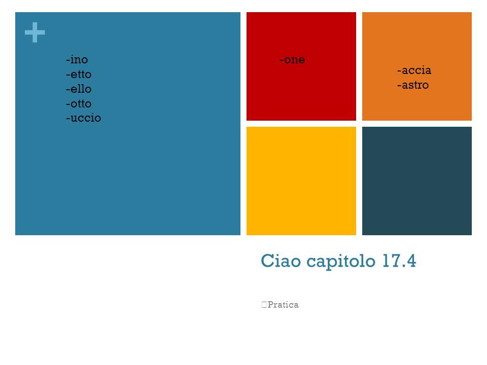 + Ciao capitolo 17.4 Pratica -ino -etto -ello -otto -uccio -one -accia -astro