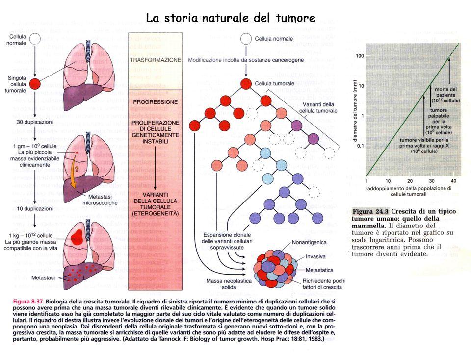 Ruolo delletà: in generale i tumori aumentano con laumentare delletà.