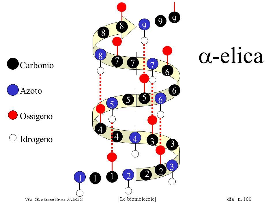 Ud'A - CdL in Scienze Motorie - AA 2002-03 [Le biomolecole] dia n. 100 Carbonio Azoto Ossigeno Idrogeno 2 2 2 3 3 3 4 4 4 5 5 5 6 6 6 7 7 7 8 8 8 9 9