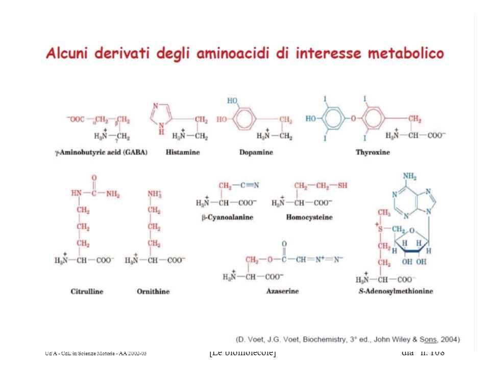 Ud'A - CdL in Scienze Motorie - AA 2002-03 [Le biomolecole] dia n. 108