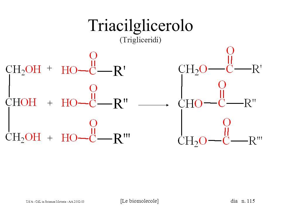 Ud'A - CdL in Scienze Motorie - AA 2002-03 [Le biomolecole] dia n. 115 Triacilglicerolo (Trigliceridi) + + +