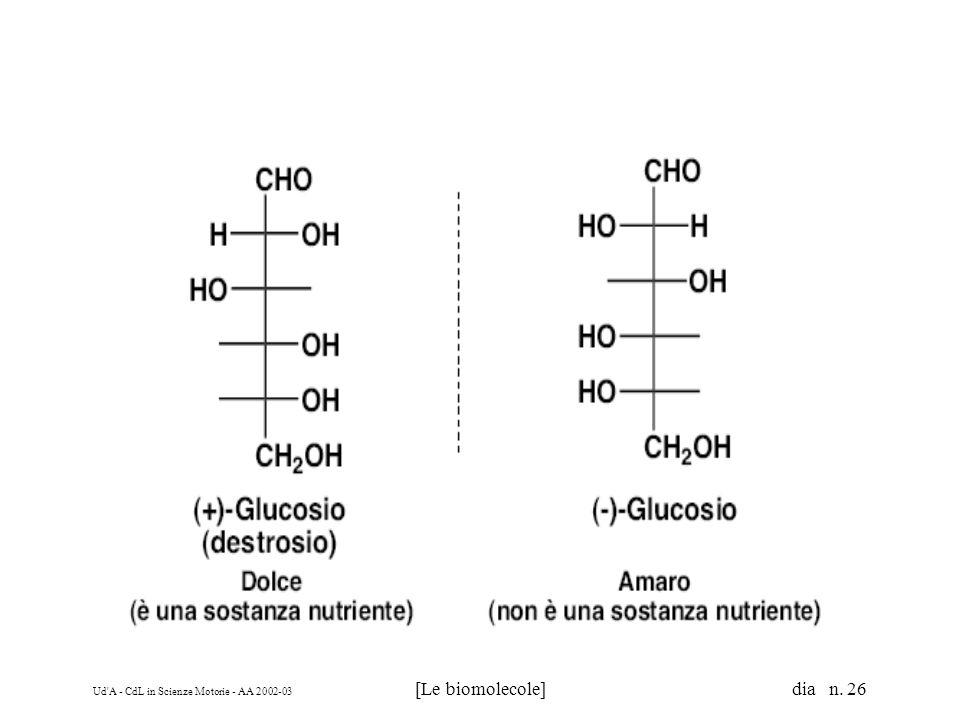 Ud'A - CdL in Scienze Motorie - AA 2002-03 [Le biomolecole] dia n. 26