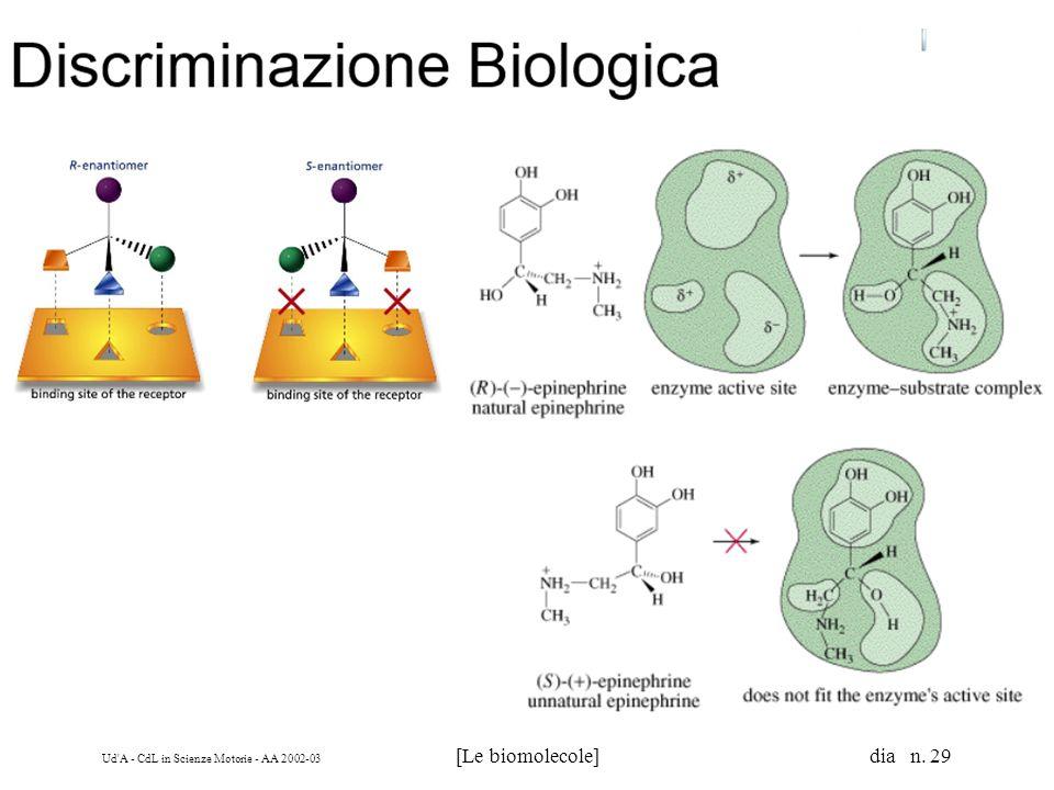 Ud'A - CdL in Scienze Motorie - AA 2002-03 [Le biomolecole] dia n. 29