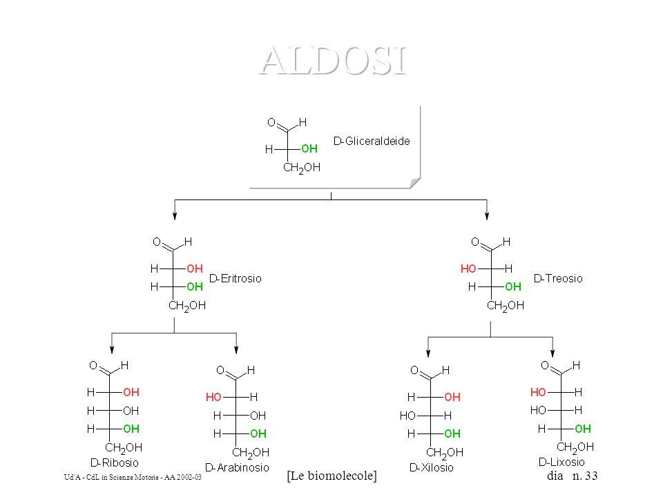Ud'A - CdL in Scienze Motorie - AA 2002-03 [Le biomolecole] dia n. 33