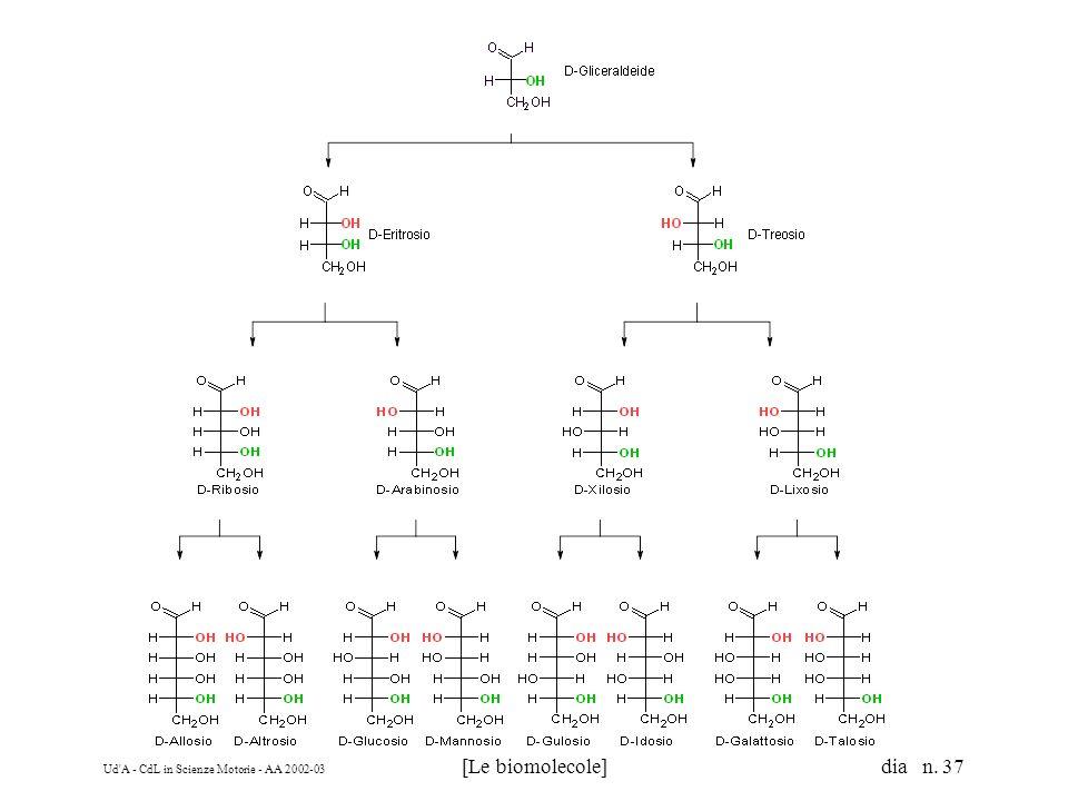 Ud'A - CdL in Scienze Motorie - AA 2002-03 [Le biomolecole] dia n. 37