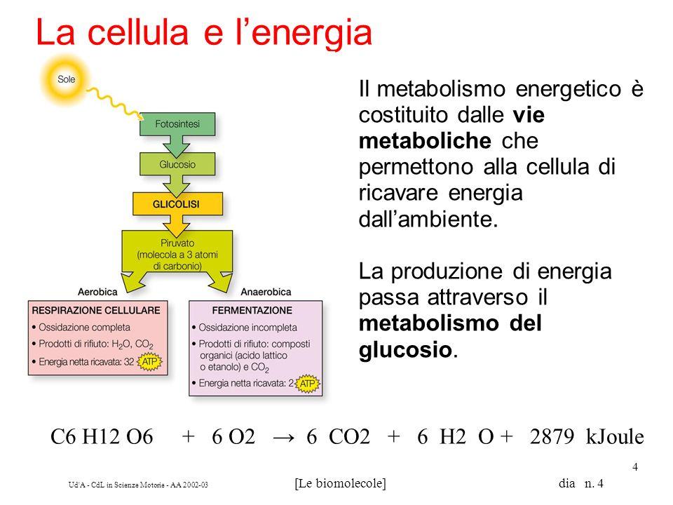 Ud'A - CdL in Scienze Motorie - AA 2002-03 [Le biomolecole] dia n. 4 4 La cellula e lenergia Il metabolismo energetico è costituito dalle vie metaboli