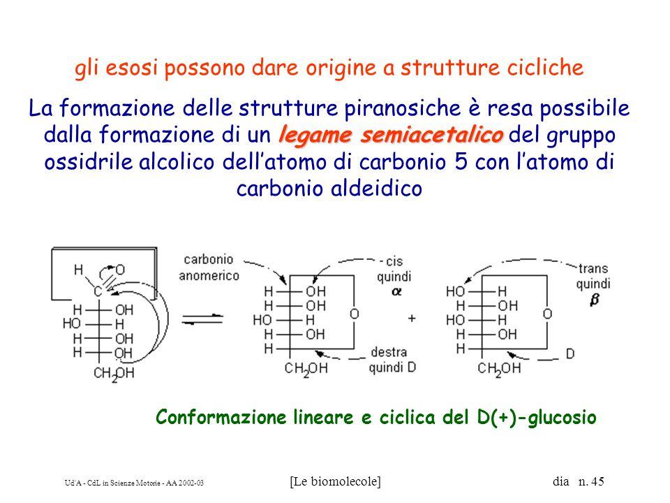 Ud'A - CdL in Scienze Motorie - AA 2002-03 [Le biomolecole] dia n. 45 Conformazione lineare e ciclica del D(+)-glucosio gli esosi possono dare origine