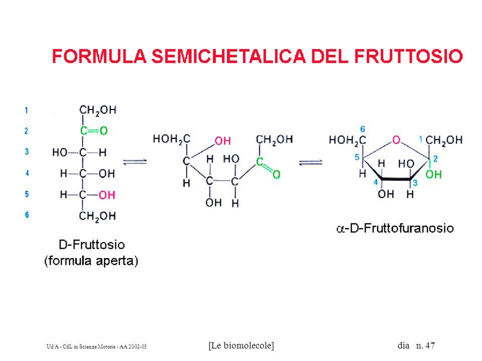 Ud'A - CdL in Scienze Motorie - AA 2002-03 [Le biomolecole] dia n. 47