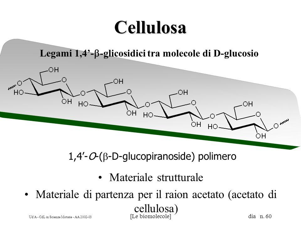 Ud'A - CdL in Scienze Motorie - AA 2002-03 [Le biomolecole] dia n. 60 Cellulosa Legami 1,4- -glicosidici tra molecole di D-glucosio Materiale struttur