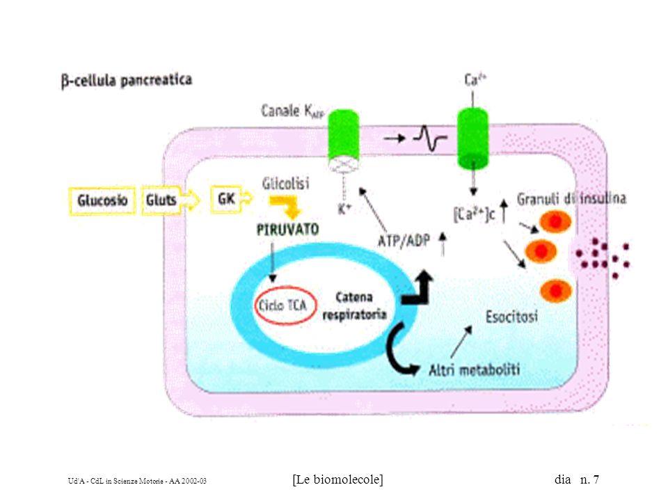Ud A - CdL in Scienze Motorie - AA 2002-03 [Le biomolecole] dia n. 18 a b c d è chirale è chirale