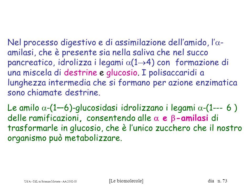 Ud'A - CdL in Scienze Motorie - AA 2002-03 [Le biomolecole] dia n. 73 Nel processo digestivo e di assimilazione dellamido, l - amilasi, che è presente