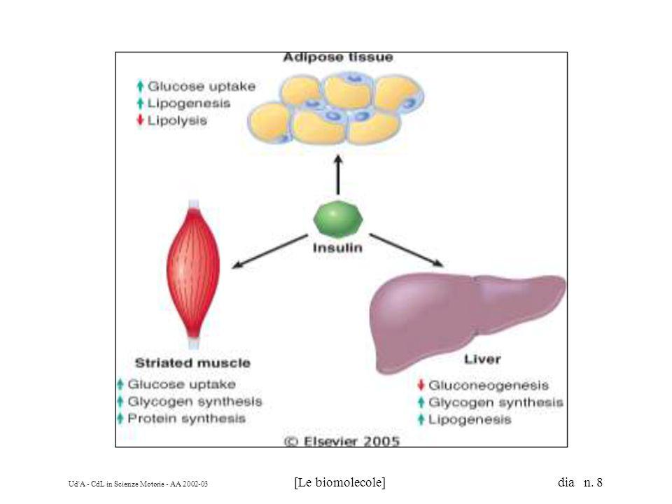 Ud A - CdL in Scienze Motorie - AA 2002-03 [Le biomolecole] dia n. 119 Glicerolo –3-fosfato