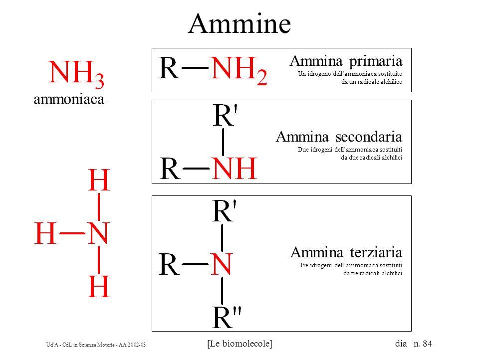 Ud'A - CdL in Scienze Motorie - AA 2002-03 [Le biomolecole] dia n. 84 Ammine ammoniaca Ammina primaria Un idrogeno dellammoniaca sostituito da un radi