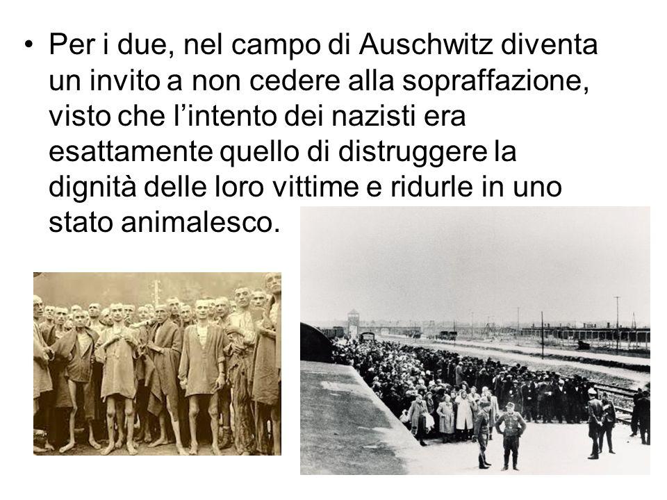 Le immagini utilizzate sono state tratte da vari siti, in particolare quello di Massimo de Rigo Il dono di vedere