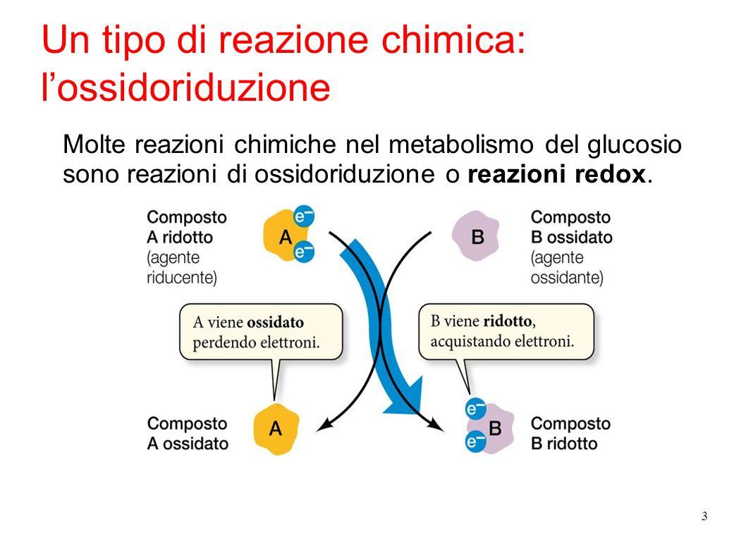 3 Un tipo di reazione chimica: lossidoriduzione Molte reazioni chimiche nel metabolismo del glucosio sono reazioni di ossidoriduzione o reazioni redox