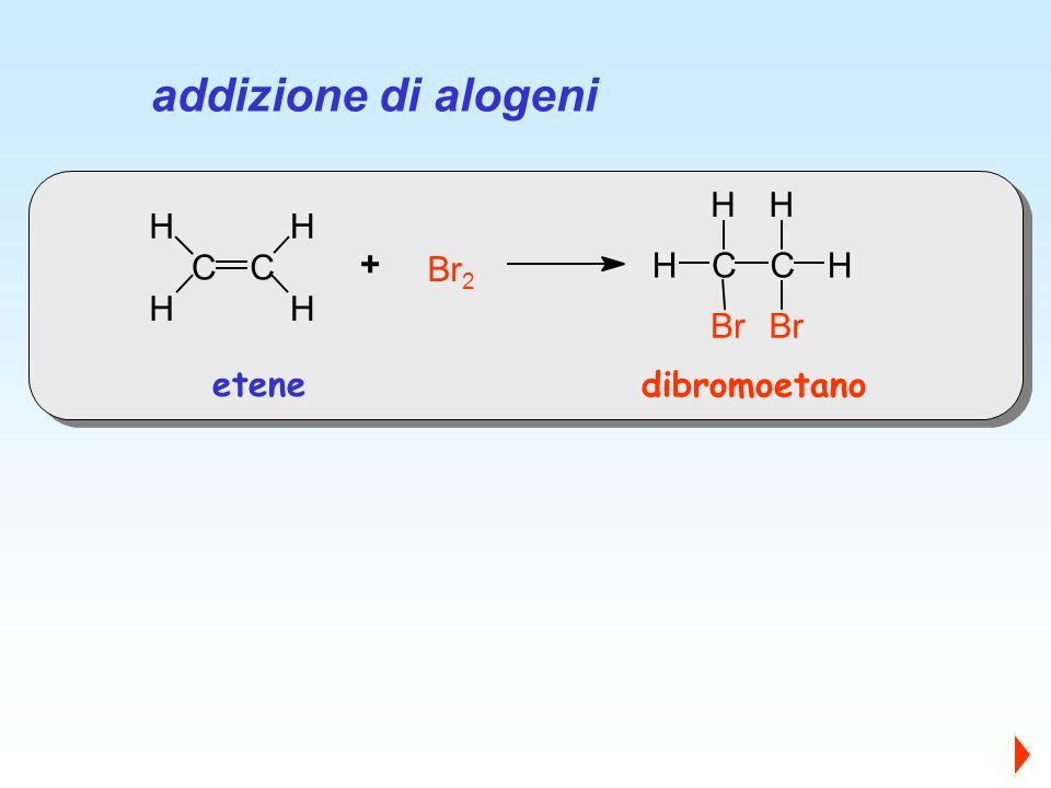 CC H HH H Br 2 CC H H Br H H + etene dibromoetano addizione di alogeni
