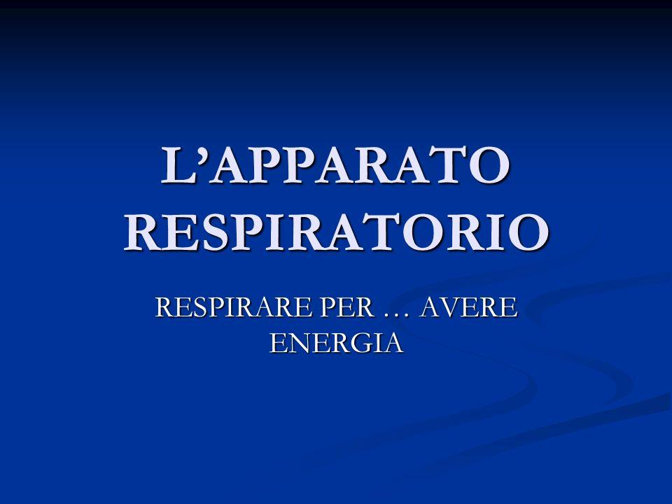 LAPPARATO RESPIRATORIO RESPIRARE PER … AVERE ENERGIA