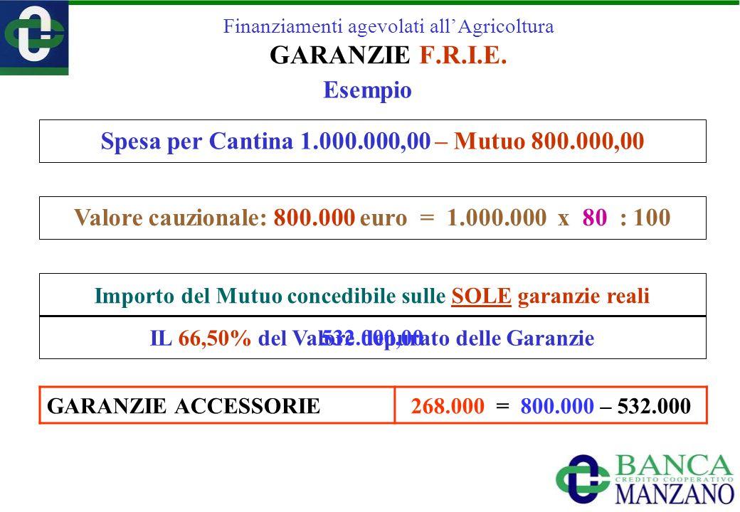 Spesa per Cantina 1.000.000,00 – Mutuo 800.000,00 Importo del Mutuo concedibile sulle SOLE garanzie reali IL 66,50% del Valore depurato delle Garanzie 532.000,00 Finanziamenti agevolati allAgricoltura GARANZIE F.R.I.E.