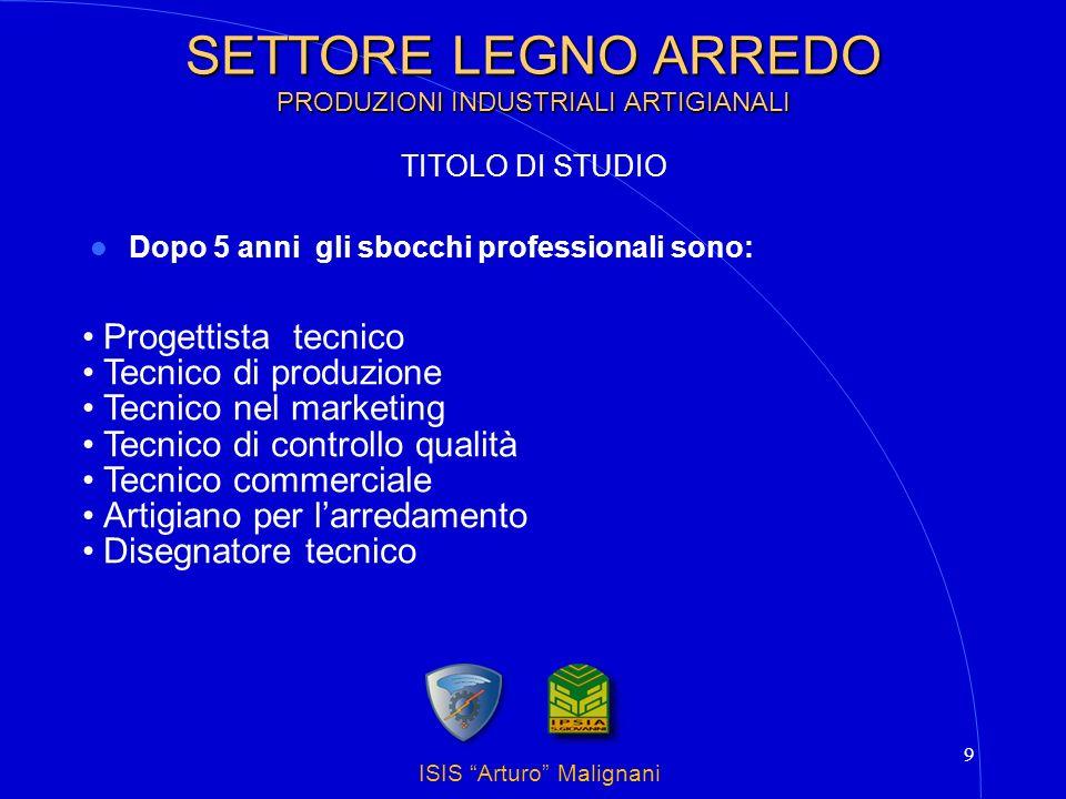 ISIS Arturo Malignani 9 SETTORE LEGNO ARREDO PRODUZIONI INDUSTRIALI ARTIGIANALI Dopo 5 anni gli sbocchi professionali sono: Progettista tecnico Tecnic