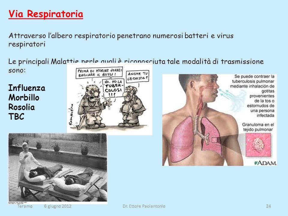 Via Respiratoria Attraverso lalbero respiratorio penetrano numerosi batteri e virus respiratori Le principali Malattie perle quali è riconosciuta tale
