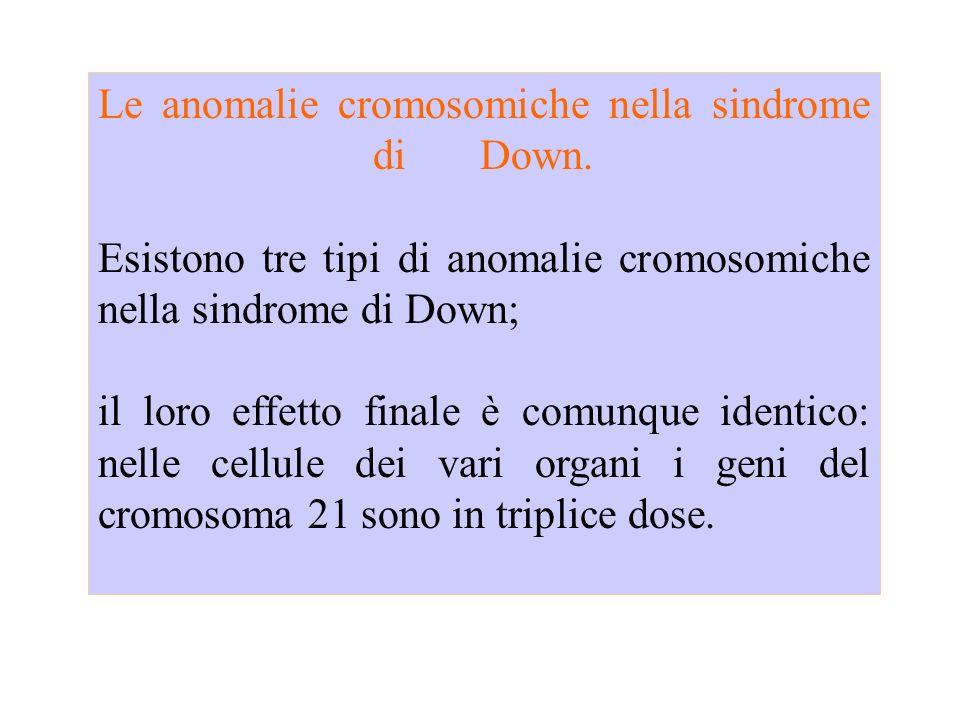 Lanomalia più frequente è la Trisomia 21 libera completa (95% dei casi) in tutte le cellule dellorganismo vi sono tre cromosomi 21 invece di due.