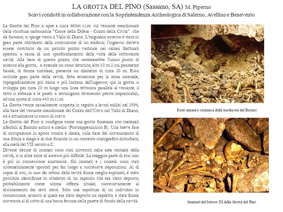 LA GROTTA DEL PINO (Sassano, SA) M. Piperno Scavi condotti in collaborazione con la Soprintendenza Archeologica di Salerno, Avellino e Benevento La Gr