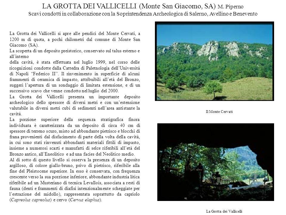 La Grotta dei Vallicelli si apre alle pendici del Monte Cervati, a 1200 m di quota, a pochi chilometri dal comune di Monte San Giacomo (SA). La scoper