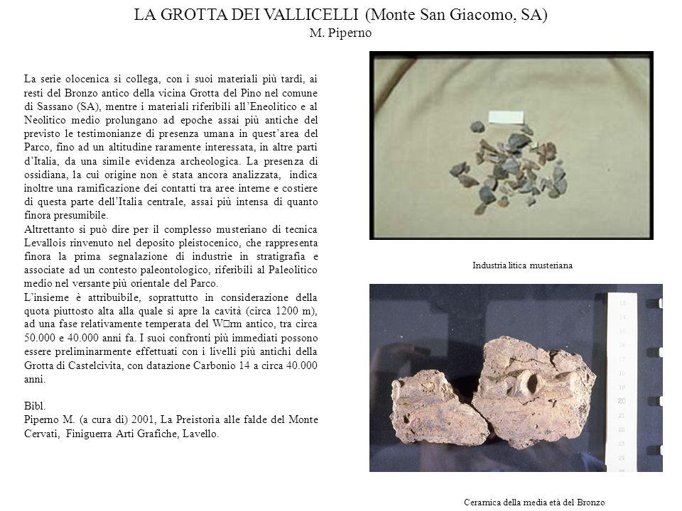 La serie olocenica si collega, con i suoi materiali più tardi, ai resti del Bronzo antico della vicina Grotta del Pino nel comune di Sassano (SA), men