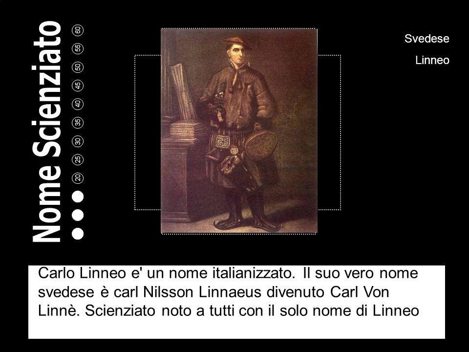 5 10 15 20 25 30 35 40 45 50 55 60 Svedese Linneo Carlo Linneo e un nome italianizzato.