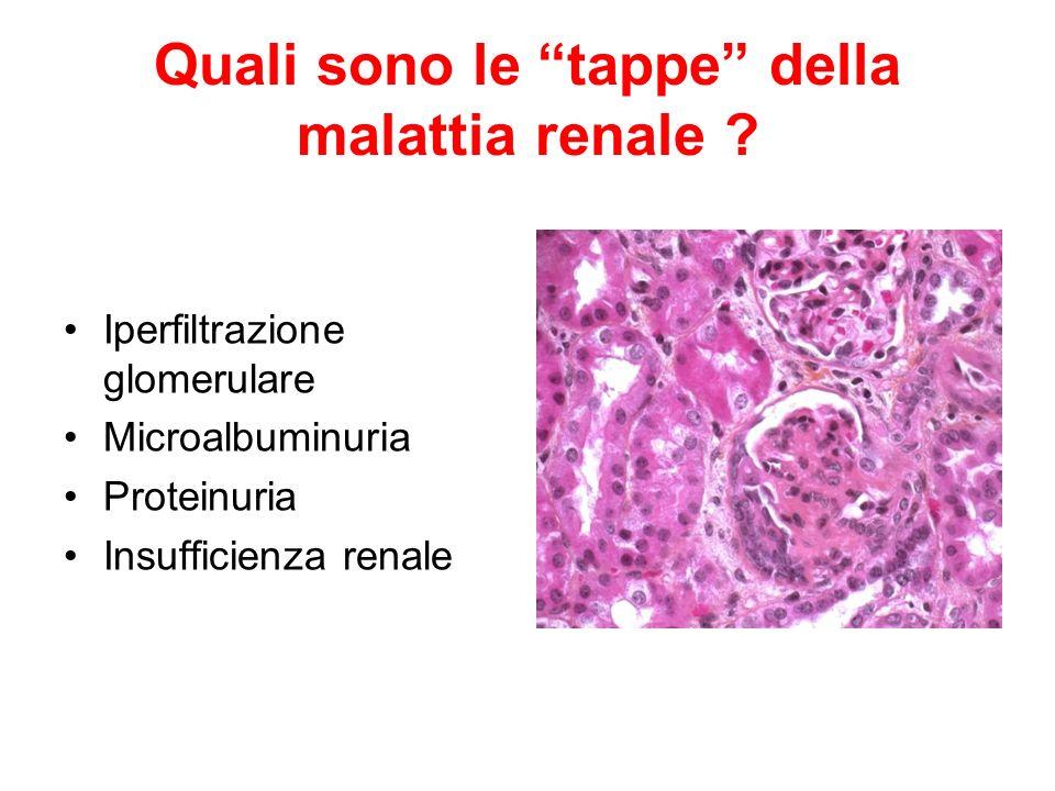 Quali sono le tappe della malattia renale ? Iperfiltrazione glomerulare Microalbuminuria Proteinuria Insufficienza renale