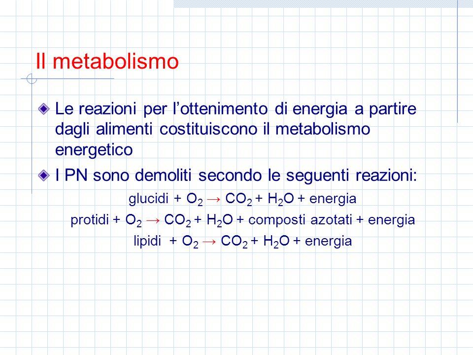 L energia liberata con lossidazione degli alimenti si misura con la bomba calorimetrica (o di Berthelt) I valori calorici sperimentali dei PN sono: 1 g di glucidi = 4,1 kcal 1 g di protidi = 5,6 kcal 1 g di lipidi = 9,3 kcal Nell organismo i valori calorici reali dei PN sono: 1 g di glucidi = 4 kcal 1 g di protidi = 4 kcal 1 g di lipidi = 9 kcal Questa differenza è dovuta ai coefficienti di digeribilità (diversi per ogni PN) Lenergia degli alimenti