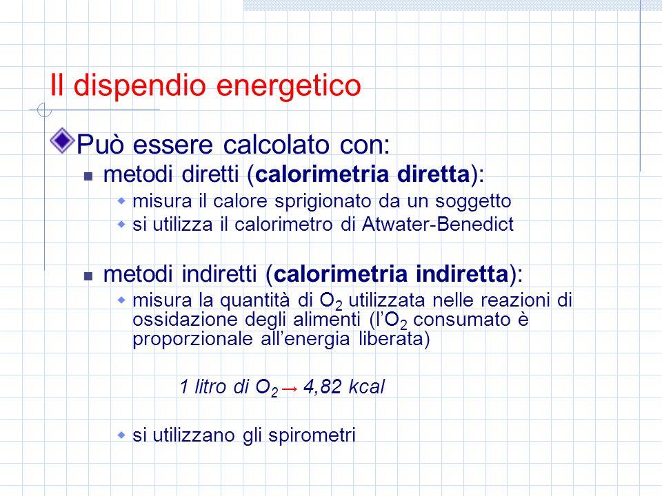 Può essere calcolato con: metodi diretti (calorimetria diretta): misura il calore sprigionato da un soggetto si utilizza il calorimetro di Atwater-Ben