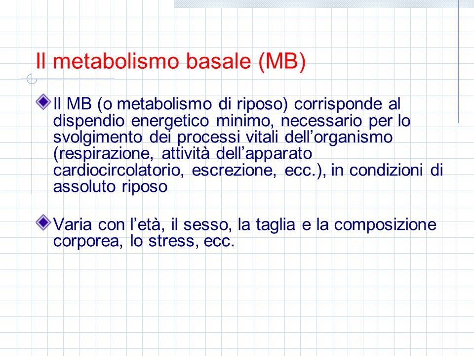Il MB (o metabolismo di riposo) corrisponde al dispendio energetico minimo, necessario per lo svolgimento dei processi vitali dellorganismo (respirazi