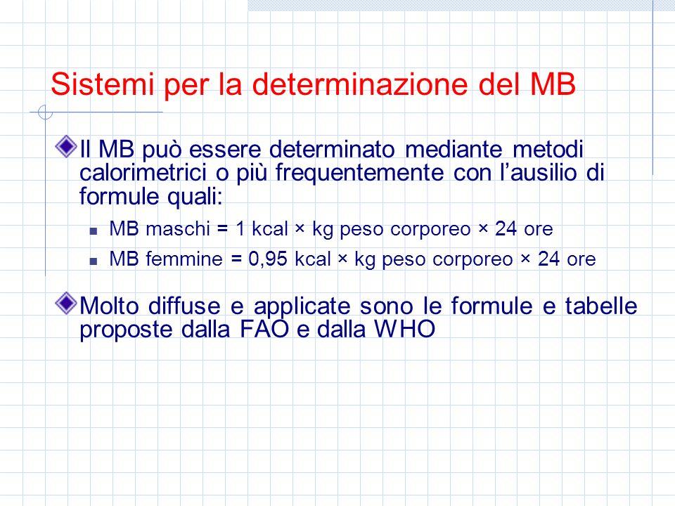 Il MB può essere determinato mediante metodi calorimetrici o più frequentemente con lausilio di formule quali: MB maschi = 1 kcal × kg peso corporeo ×