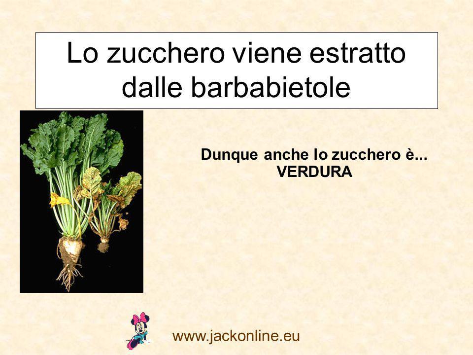 www.jackonline.eu Lo zucchero viene estratto dalle barbabietole Dunque anche lo zucchero è... VERDURA