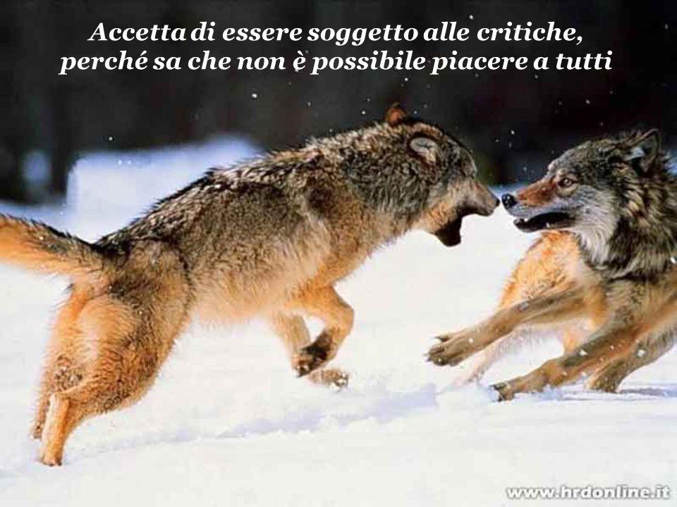 Accetta di essere soggetto alle critiche, perché sa che non è possibile piacere a tutti