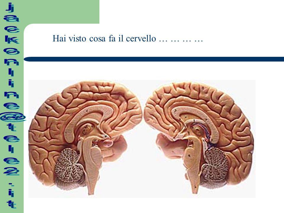 Hai visto cosa fa il cervello … … … …