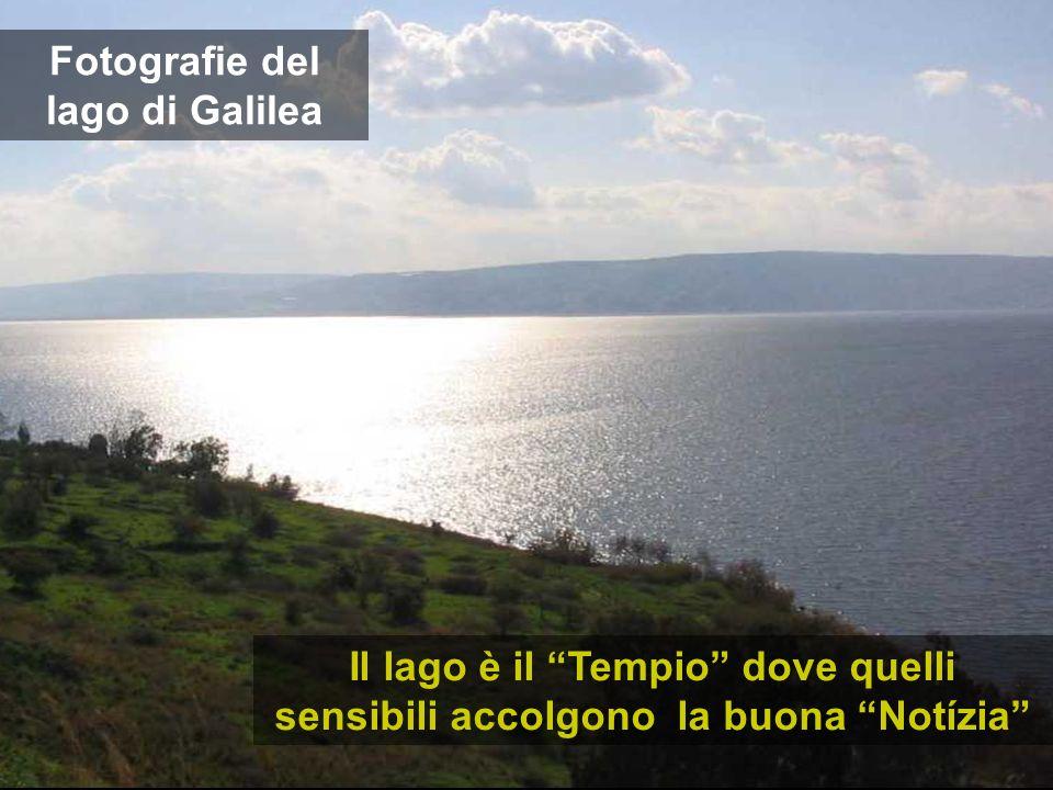 Fotografie del lago di Galilea Il lago è il Tempio dove quelli sensibili accolgono la buona Notízia