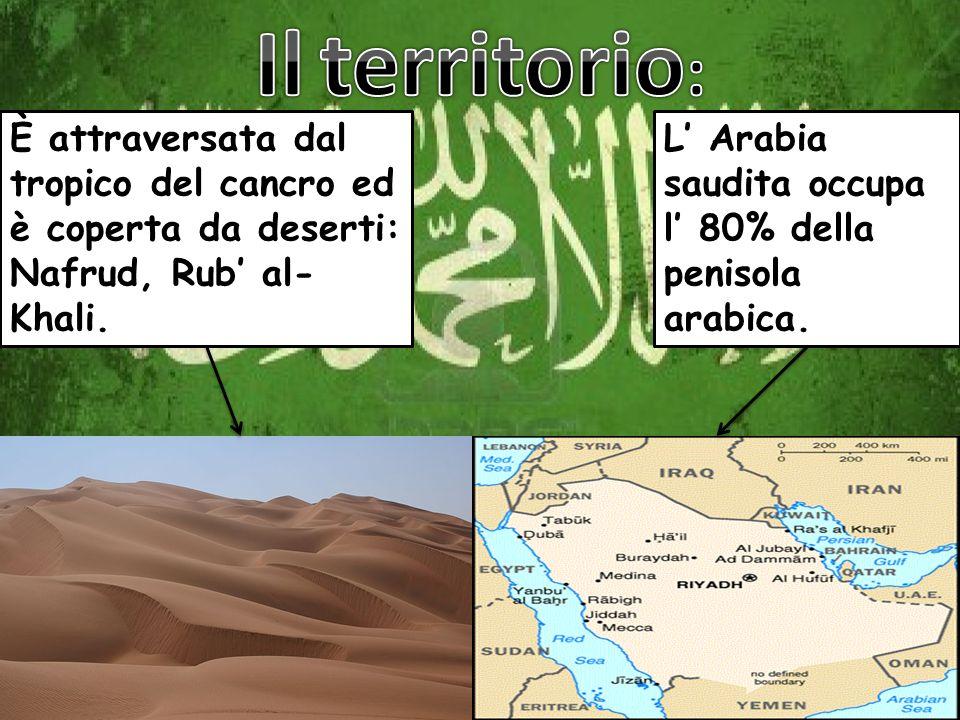 L Arabia saudita occupa l 80% della penisola arabica. È attraversata dal tropico del cancro ed è coperta da deserti: Nafrud, Rub al- Khali.