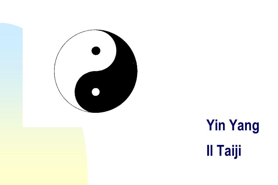 Yin Yang Il Taiji