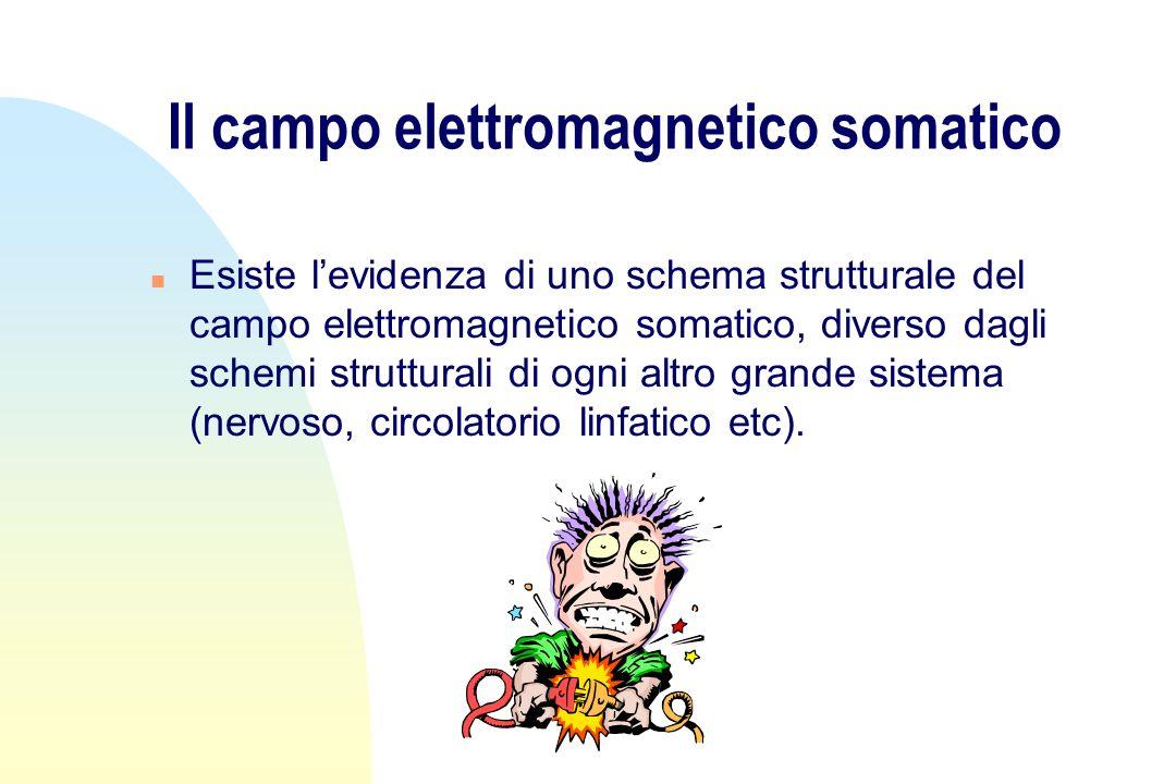 Il campo elettromagnetico somatico n Esiste levidenza di uno schema strutturale del campo elettromagnetico somatico, diverso dagli schemi strutturali di ogni altro grande sistema (nervoso, circolatorio linfatico etc).