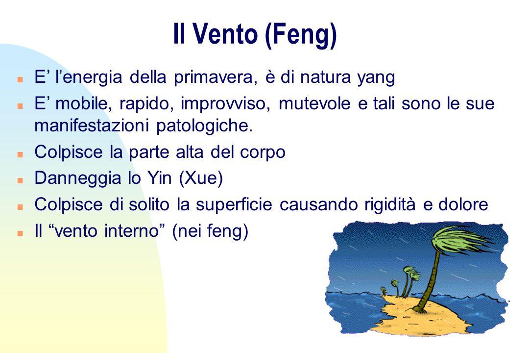 Il Vento (Feng) n E lenergia della primavera, è di natura yang n E mobile, rapido, improvviso, mutevole e tali sono le sue manifestazioni patologiche.
